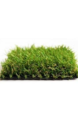 Economy Grass