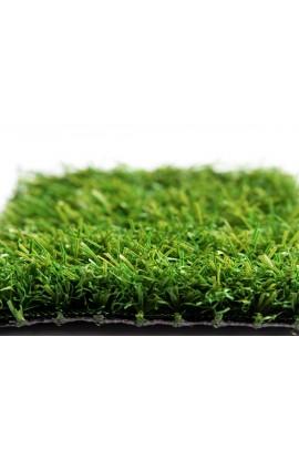 Economy Green